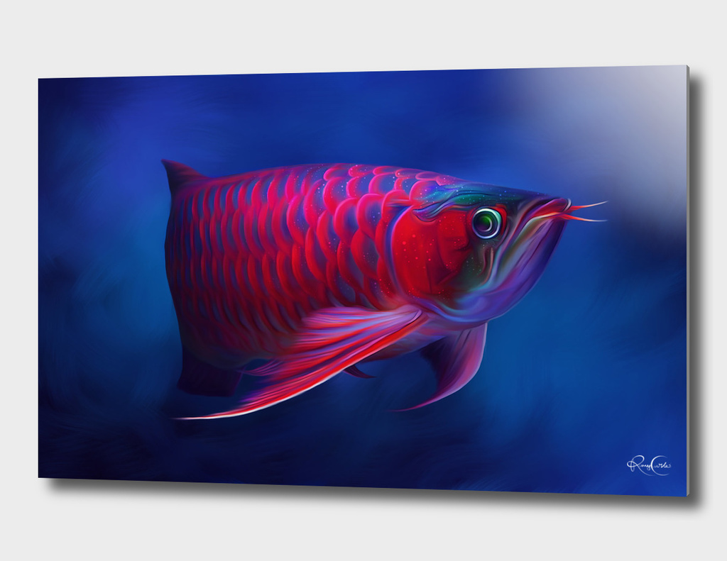 Red Dragon Arowana