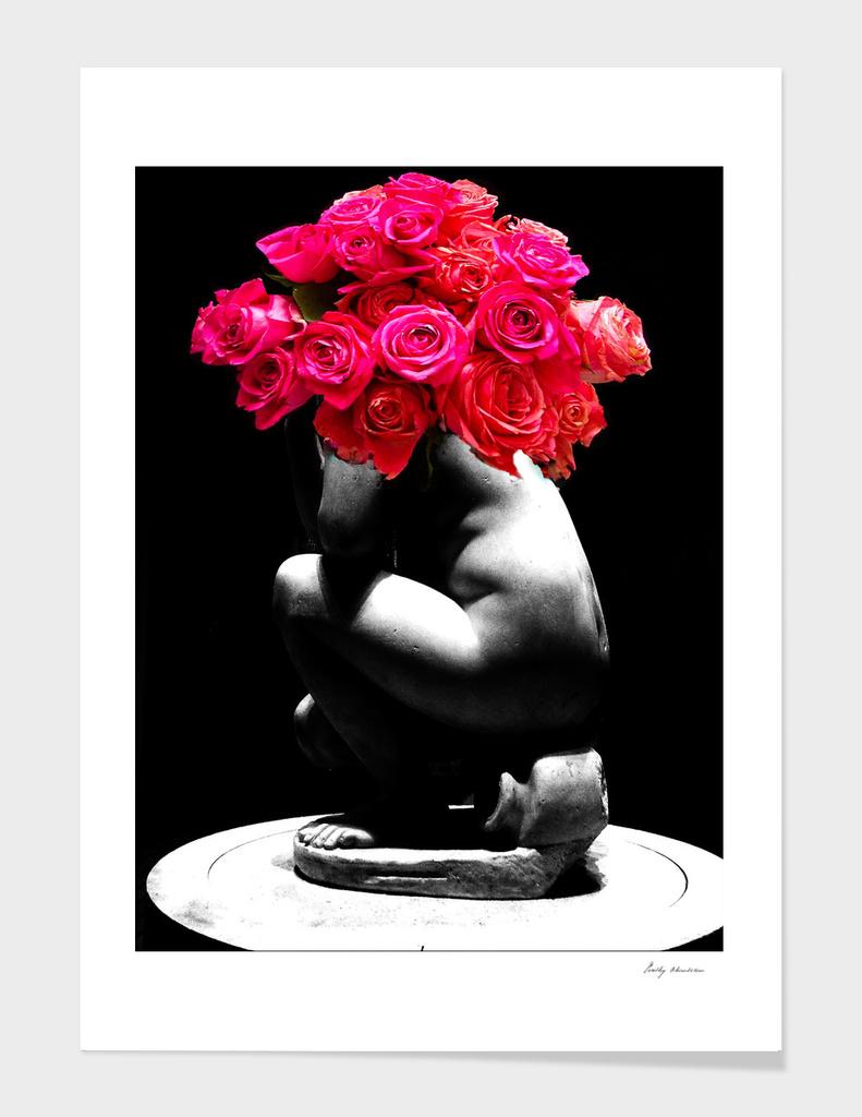 VENUS ROSE 3