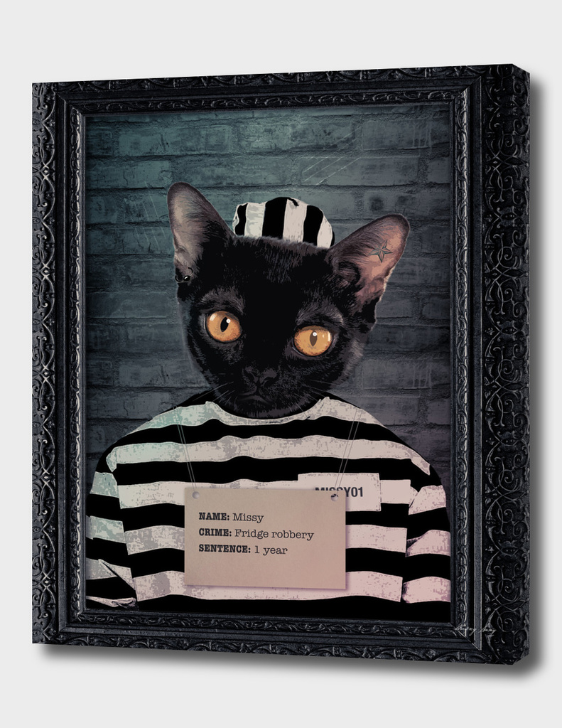 Criminal Cats Collection Missy