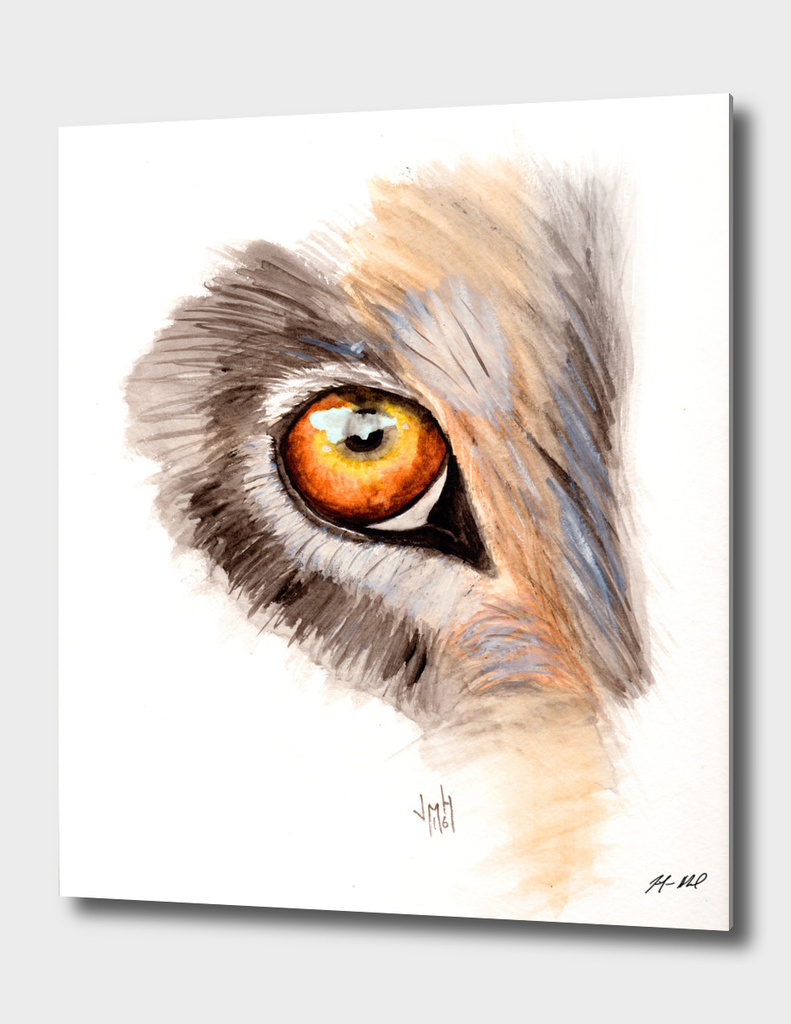 Wolf Eye Watercolor