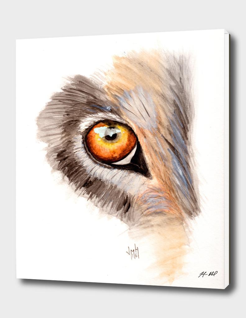 Wolf Eye Watercolor