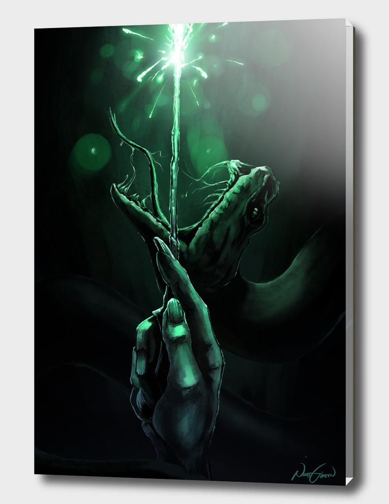 Voldemort - Slytherin