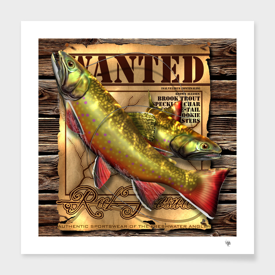 REEL TREASURES WANTED- Brook Trout