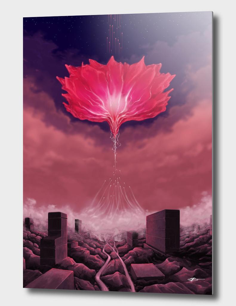Flower of Singularity