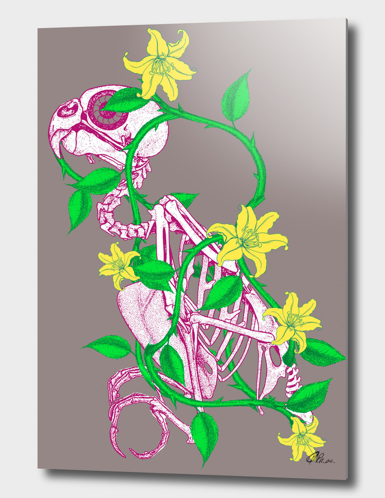 Bird Skeleton wrapped in vine flower