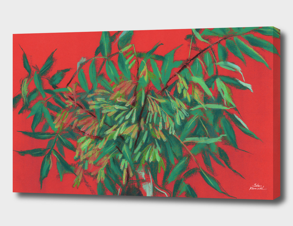 Ash-tree in red & green