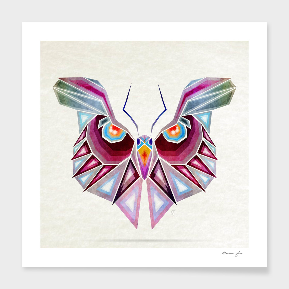 owl or butterfly