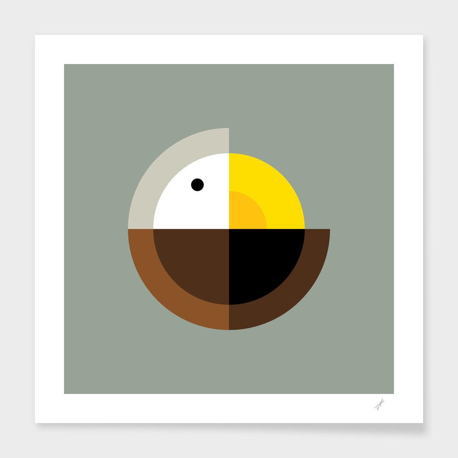 Quadrant Eagle