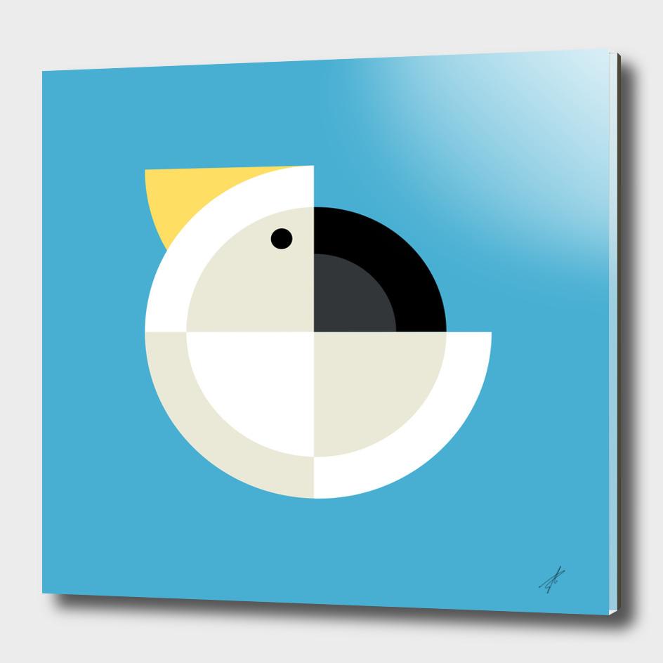 Quadrant Cockatoo