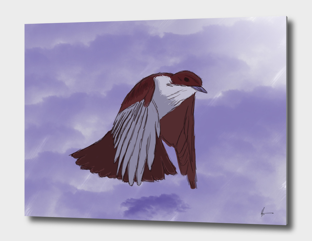 Glaciado Bird