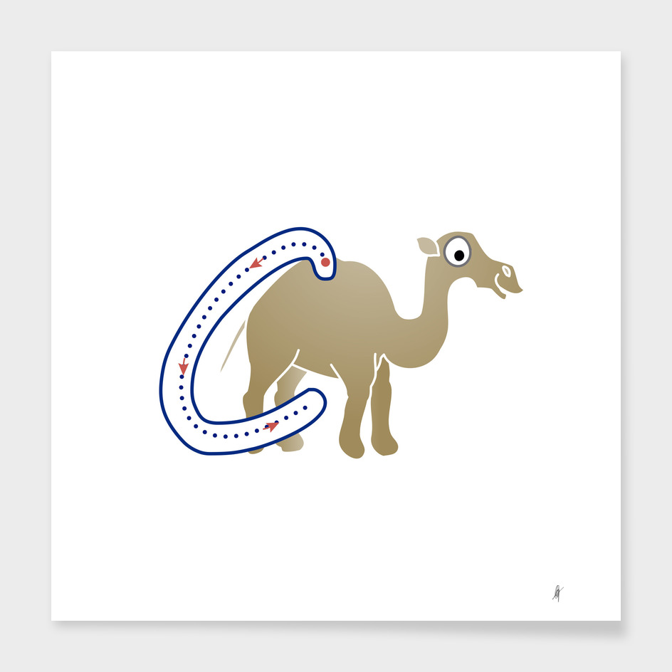 Animal alphabet, letter C: Camel