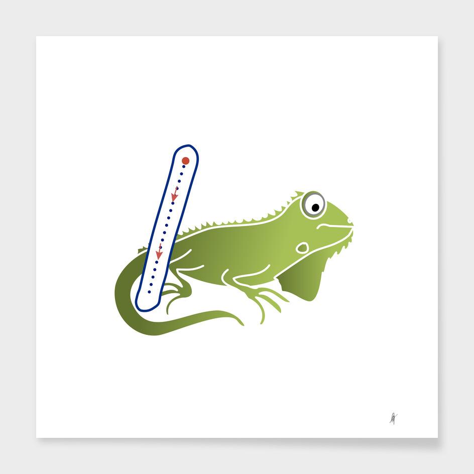 Animal alphabet, letter I: Iguana