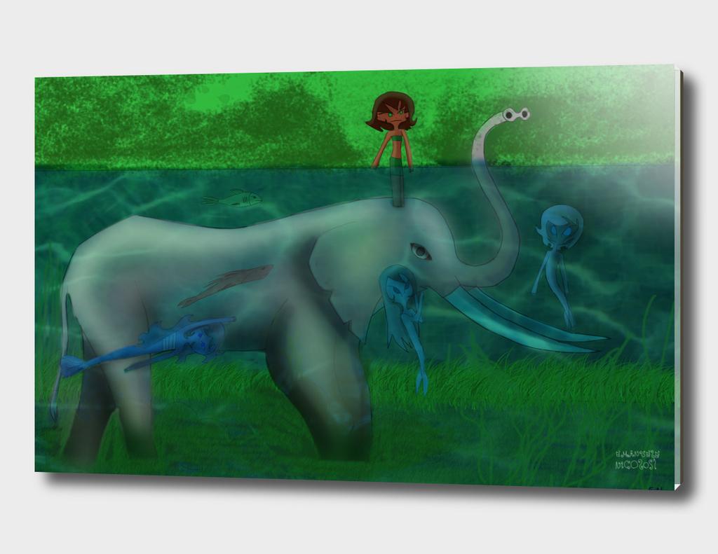 elephant-water