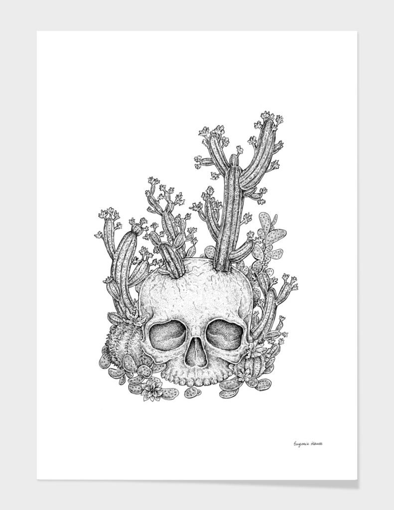 Skull Cacti