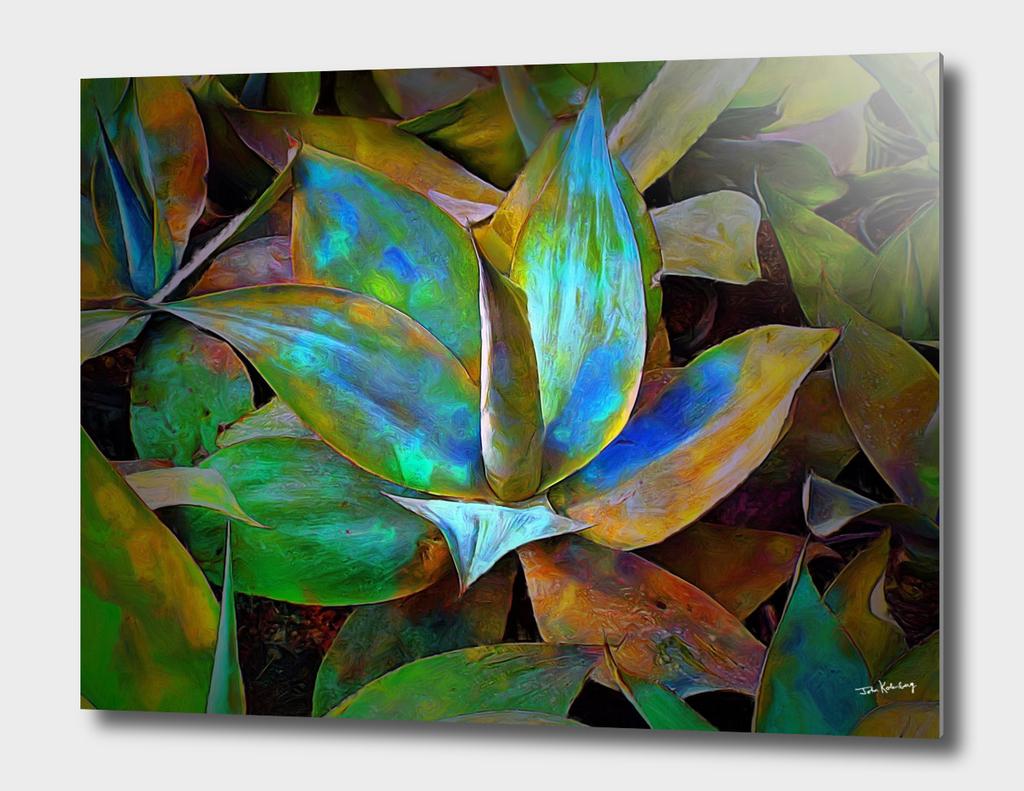 colored-cactus-john-kolenberg