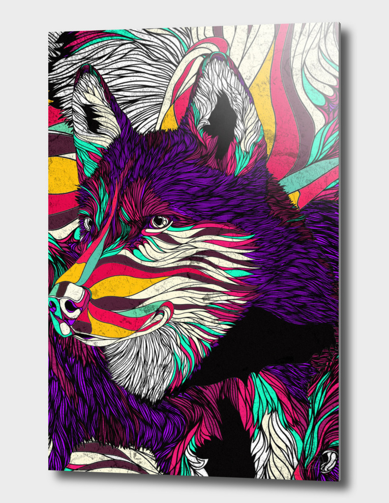 Color Husky