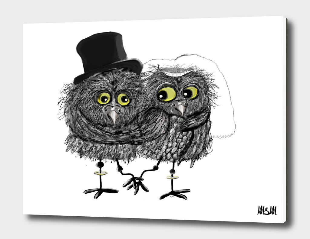 Weddings owls