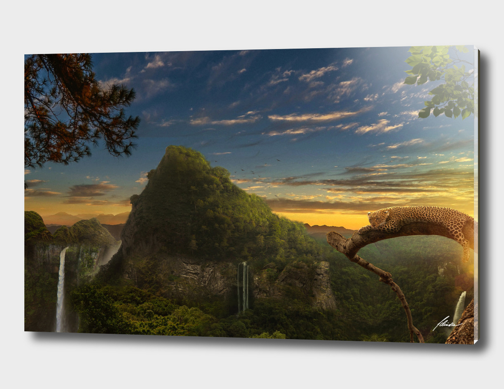 Leopard Fantasy Land