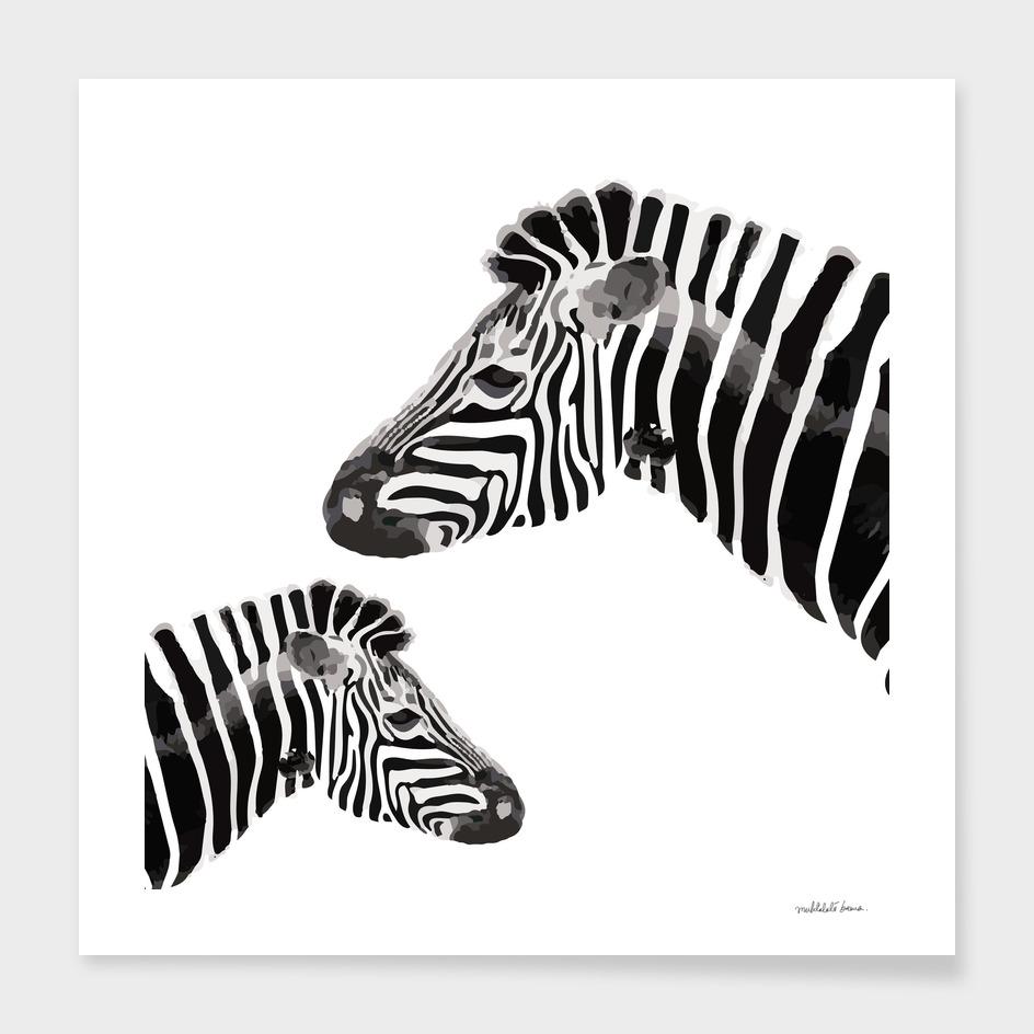 Zebra (white)