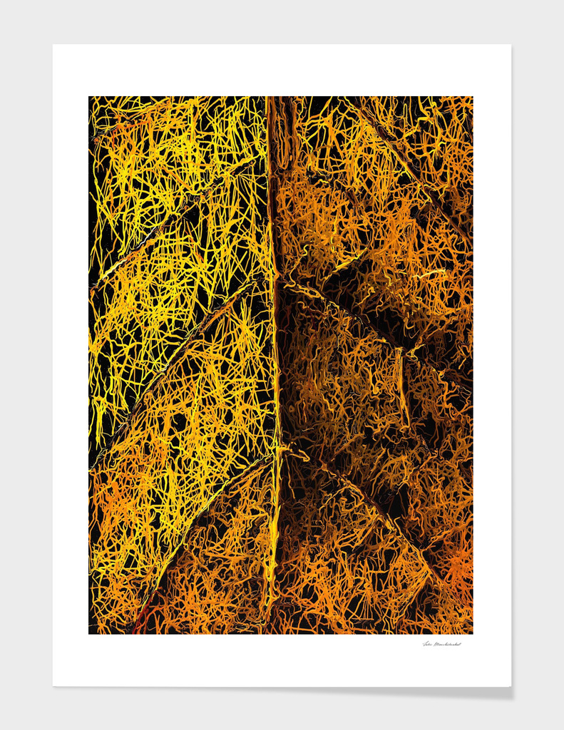 drawing and painting rotten yellow leaf texture abstract
