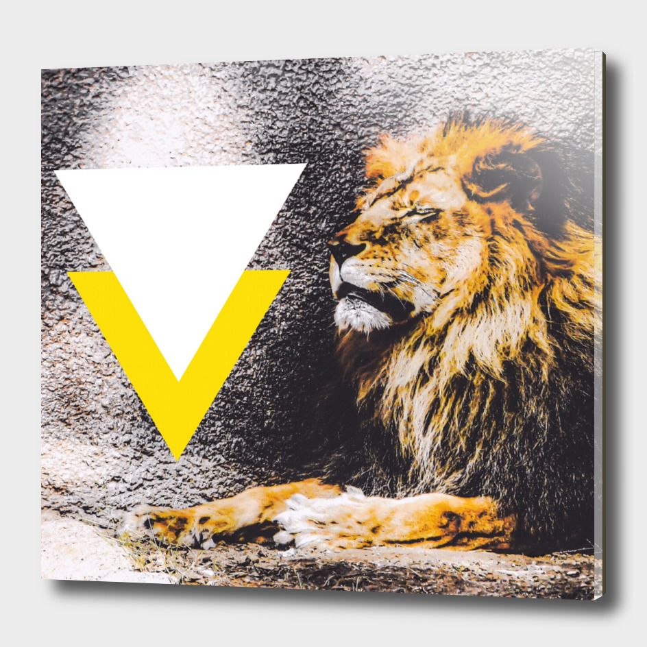 lion with white and yellow triangle