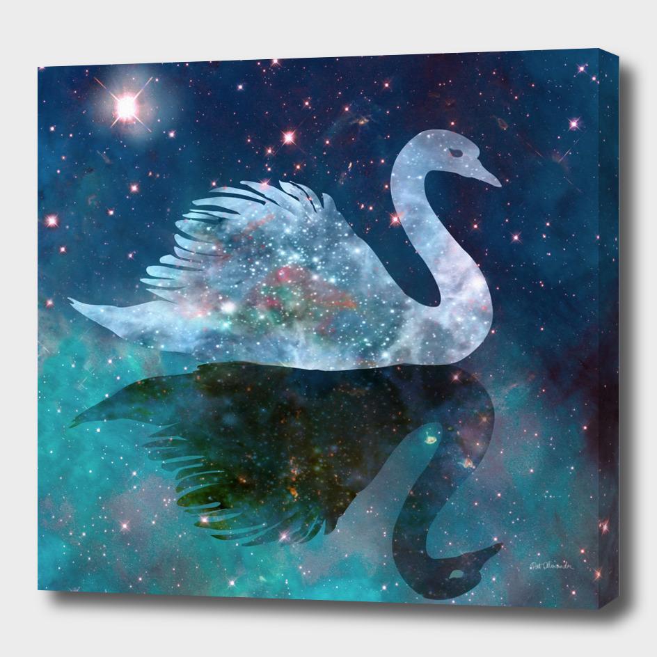 Swan Shadow