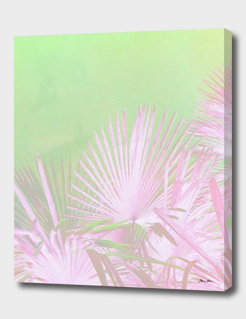 Pink & green paradise