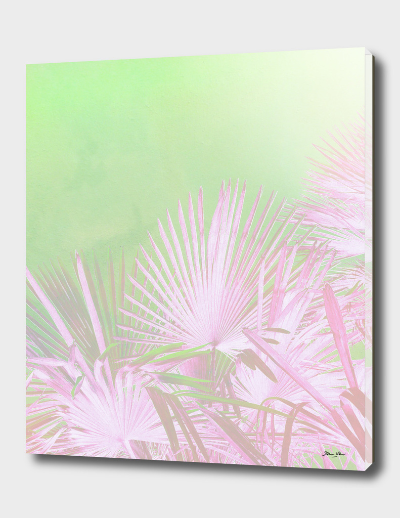 Pink & green paradise