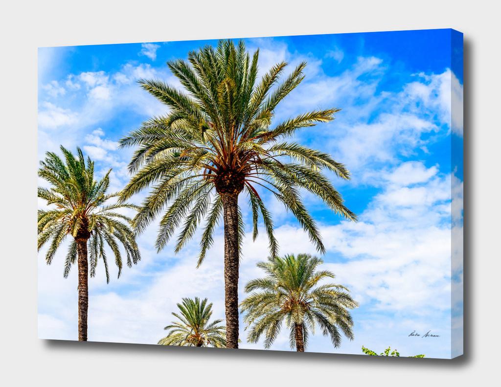 Green Island Palm Trees On Blue Sky