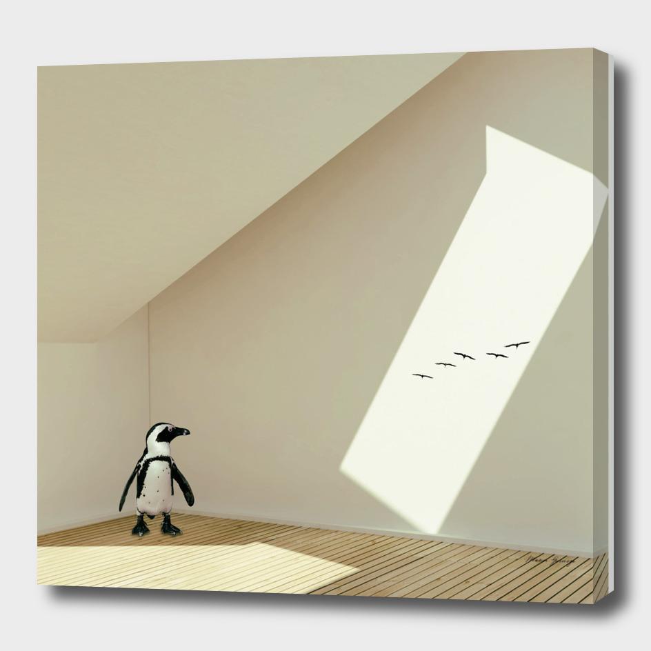 the last penguin