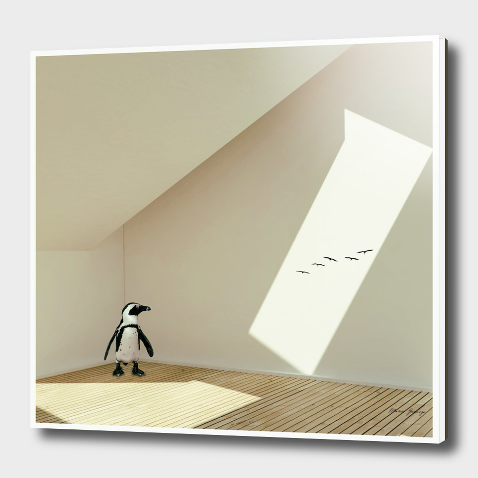 the last penguin
