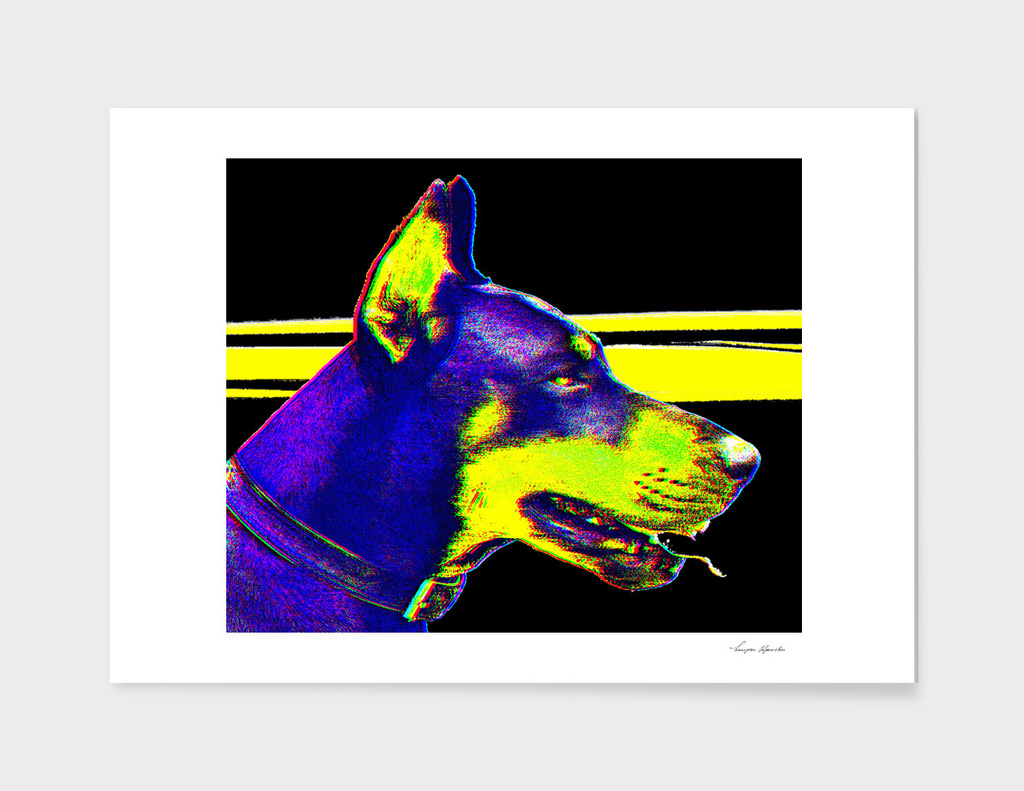 DOBERMAN YELLOW