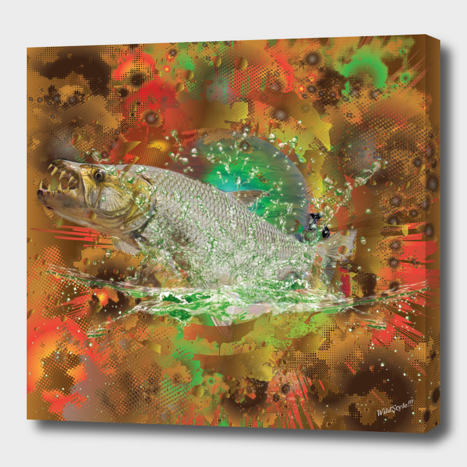 Tiger Game Fish Africa