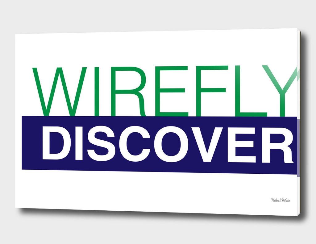 WireFly.Discover.Logo