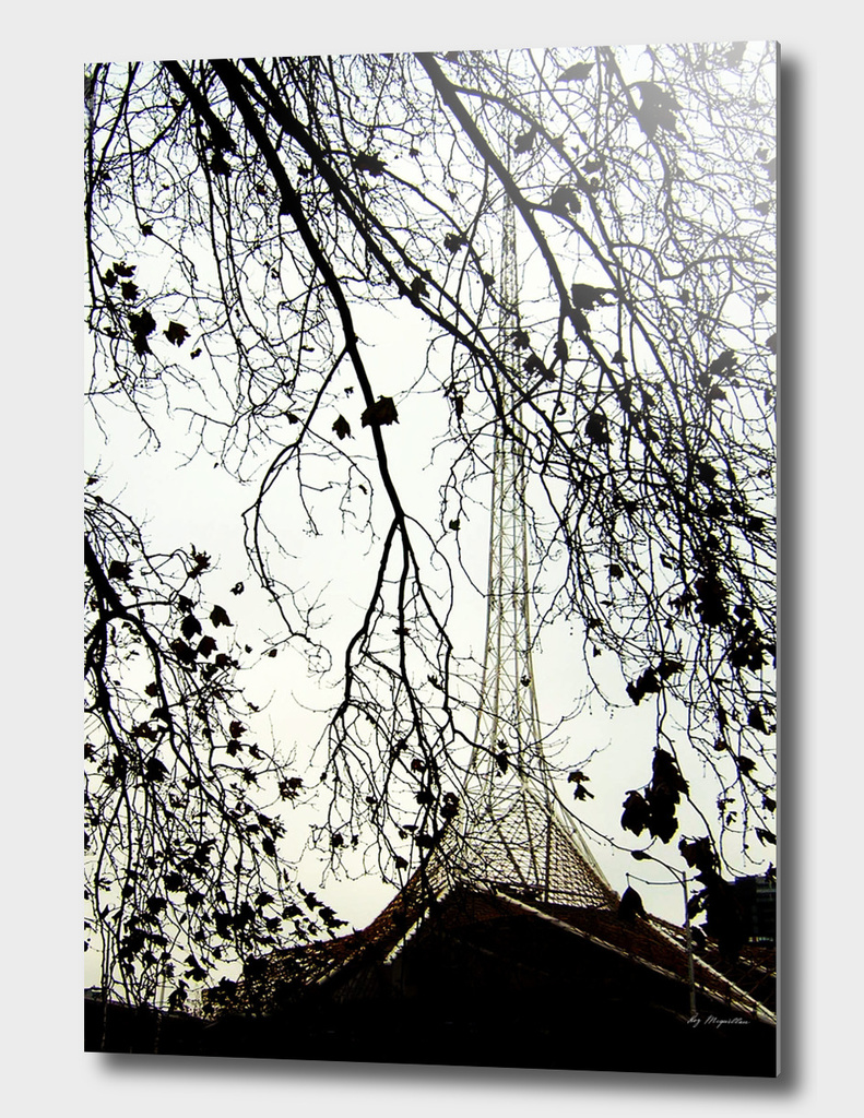 Arts Centre Tower and winter trees, Melbourne