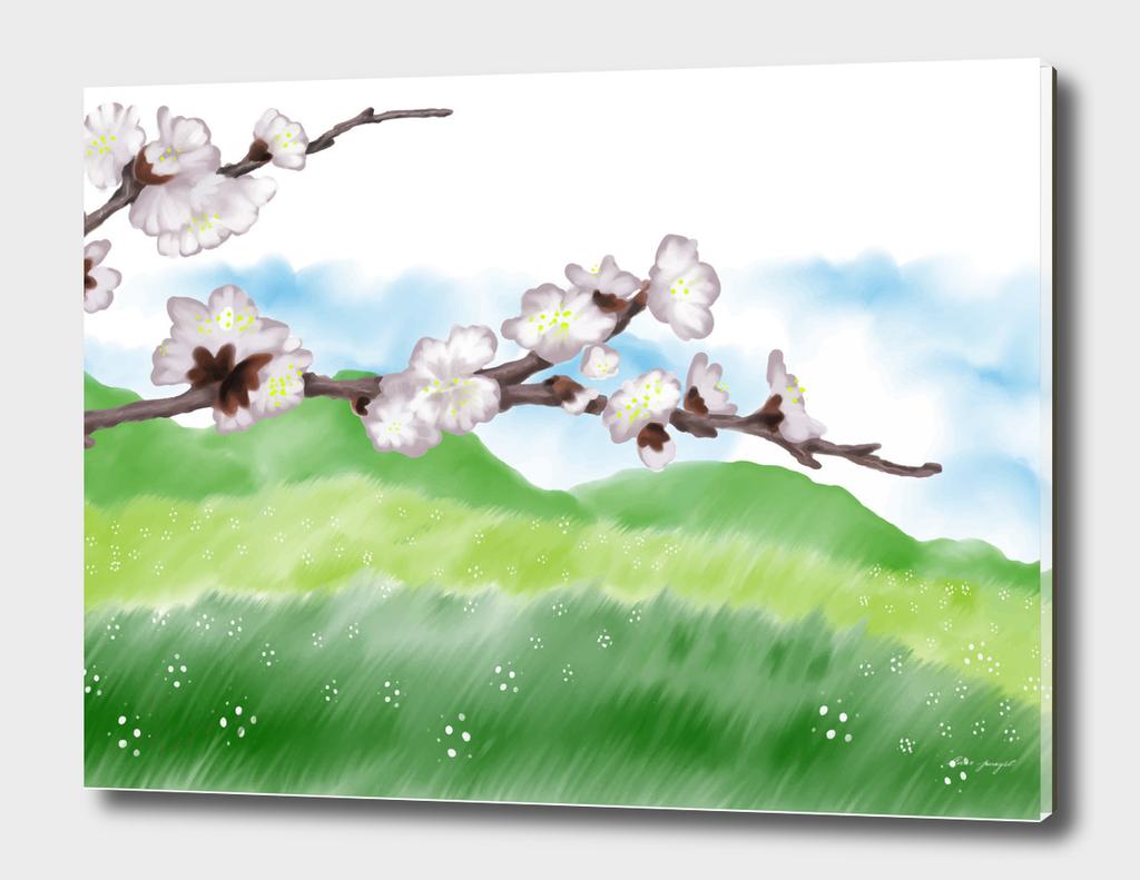 spring tree branche
