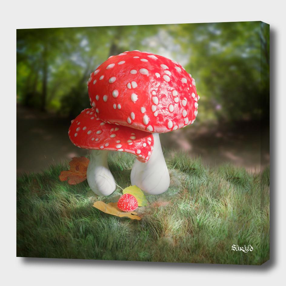 Fairy Mushroom Baby