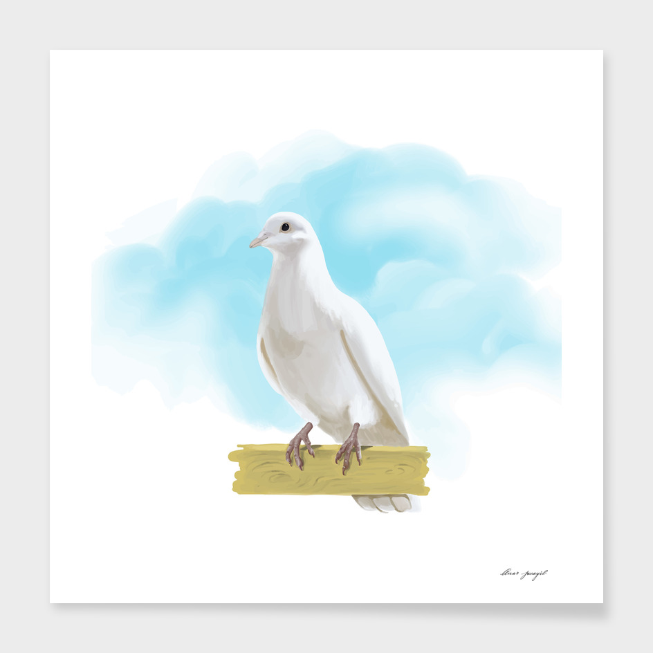 Hand Painting Dove