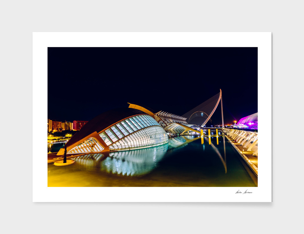 Calatrava City Of Arts And Sciences In Valencia