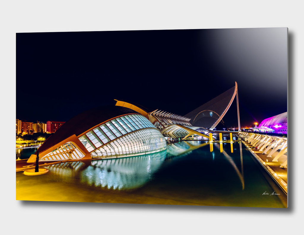Calatrava City Of Arts And Sciences In Valencia