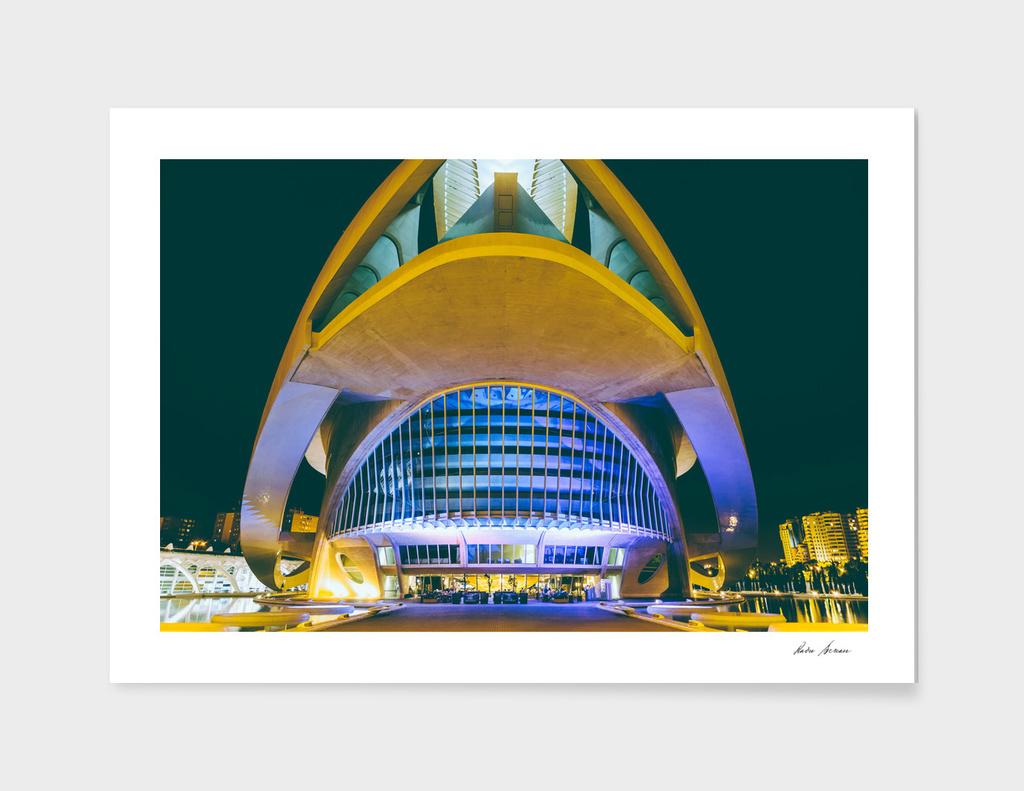 Calatrava City Of Arts And Sciences In City Of Valencia