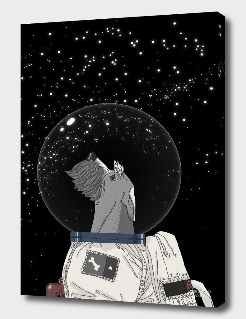 Cão Astronauta