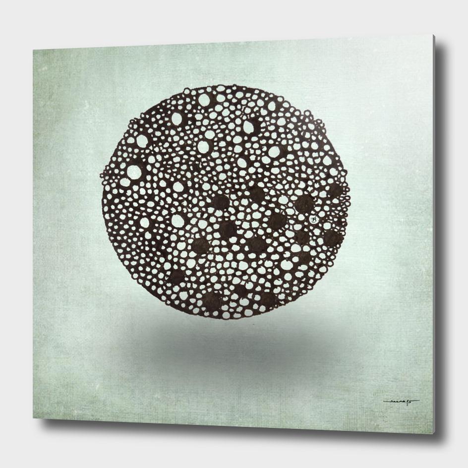 Floating Tipple Ball