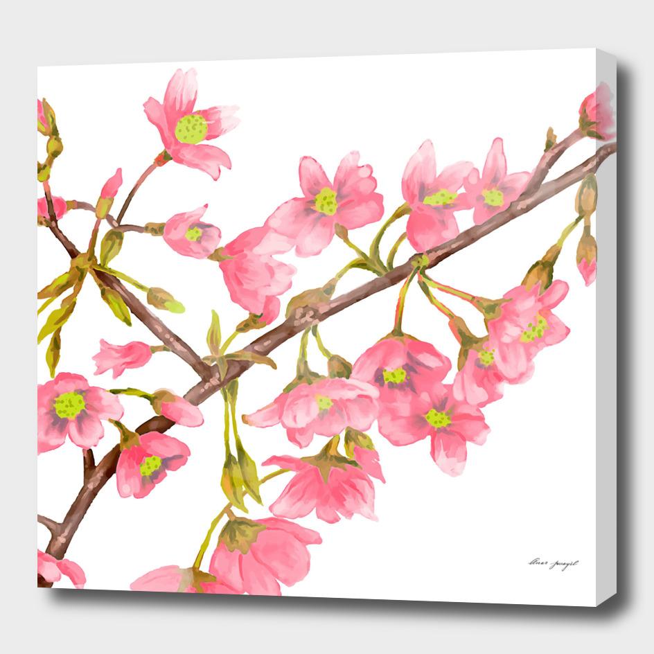 Spring tree branche watercolor