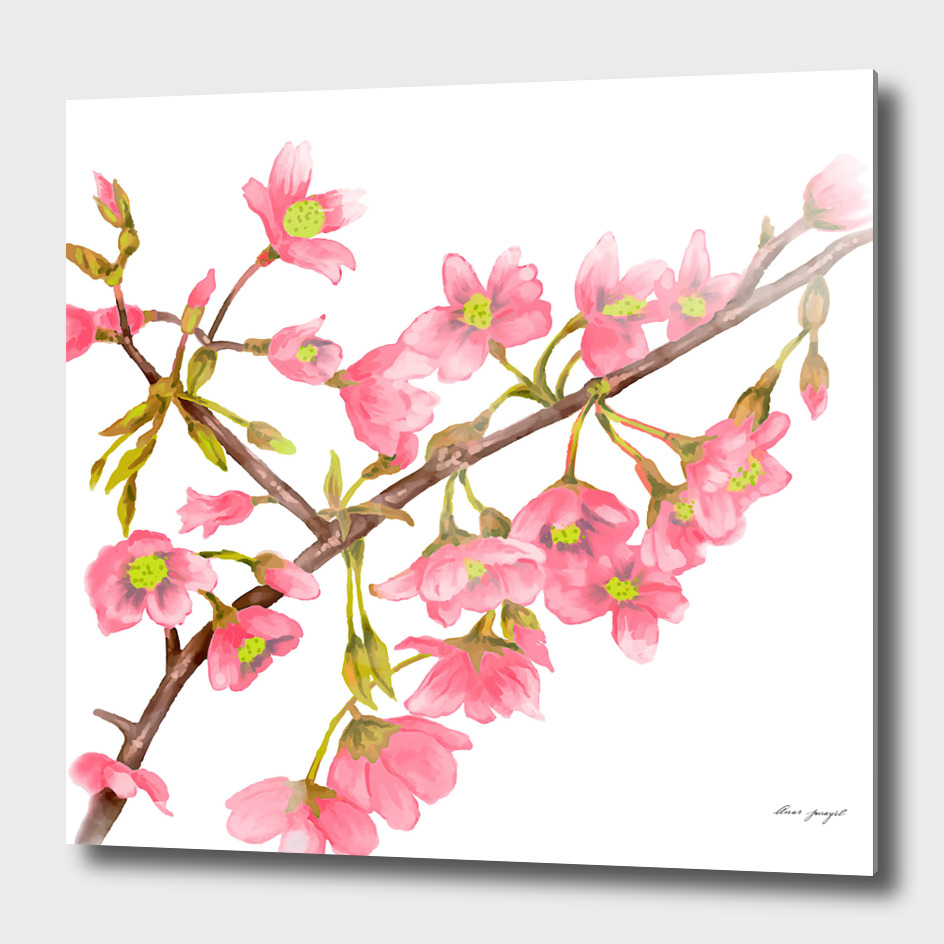 Spring tree branche watercolor