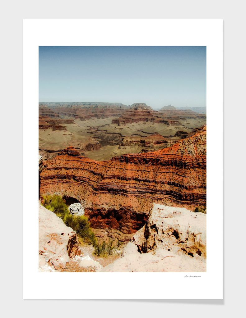 desert in summer at Grand Canyon national park, USA