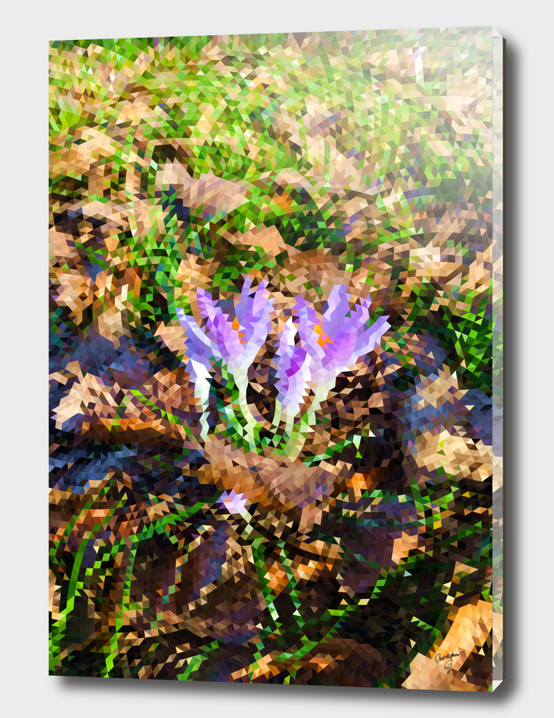 Signs of Spring - Crocus Low Poly