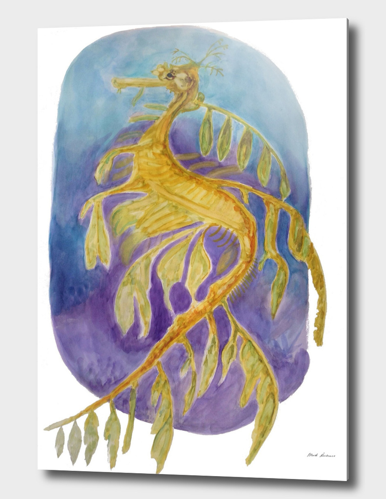 The Ribbon Sea Dragon