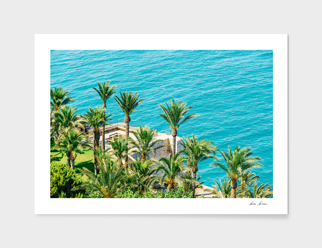 Aerial View Of Green Palm Trees And Blue Ocean Landscape