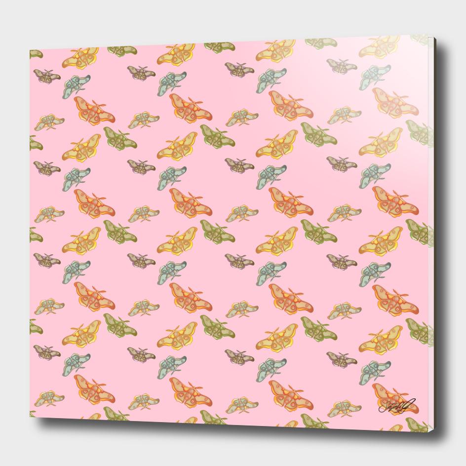 Pink Polyphemus Moths